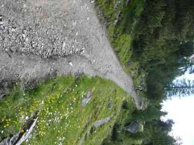 transalp2008_2008-07-18_052.JPG